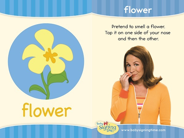 Flowers Baby Sign Language ASL Dictionary USA